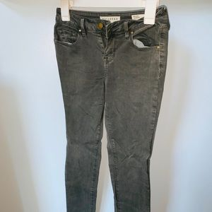 PAC Sun Gray Jeans